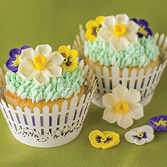 Cupcake Decorating Products
