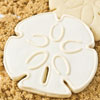 Hammer Song Sand Dollar Tin Cookie Cutter
