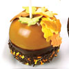 Fall Candy Apples How-To