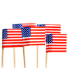 American Flag Food Picks, Set of 24