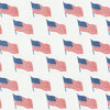 USA Flag Chocolate Transfer Sheet