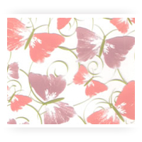 Spring Chocolate Transfer Sheets