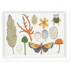 SALE! Natural Ephemera Porcelain Tray