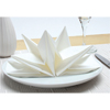 Origami Fancy Fold Paper Napkins White, Set of 12