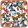 Michel Design Works Butterflies Paper Plates, Luncheon
