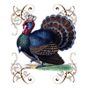 Crowned Barnyard Turkey Flour Sack Dish Towel