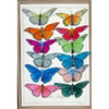 Jewel Tone Butterfly Clips, Set of 12