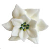 Icing Poinsettia White, Set of 9