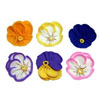 Icing Flower Pansies 1.25