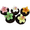 Fondant Mini Cymbidium Orchids Assortment  Set of 18
