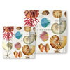 Michel Design Works Shells Paper Plates, Di